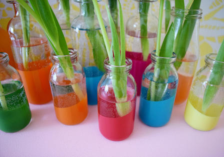 paint dipped glass bottles